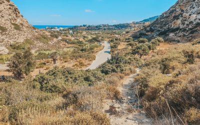 Hiking on Karpathos with Art&Walk